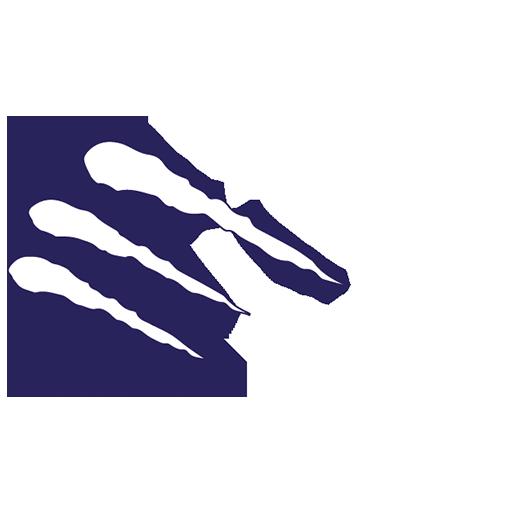 Bengals Brescia