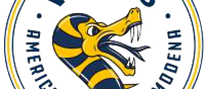 vipers_logo